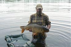 Kapr z rybníka Staňkovský