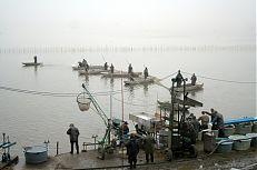 Pohled na loviště rybníka Dvořiště.