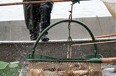 Rybáři v akci.