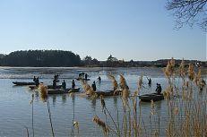 Pohled na zátah rybářů při výlovu Jamského rybníka.