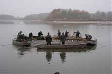 Rybáři na lodích vytahují síť, aby se zmenšil prostor, a aby ryba tzv. zhoustla.