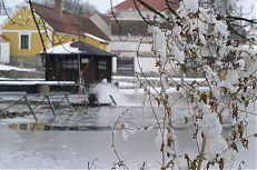 Bošilecký rybník v zimě.